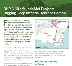 BHP Billiton's Indomet Project: Digging deep into the Heart of Borneo