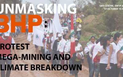 Unmasking BHP: frontline defenders inside the company's AGM